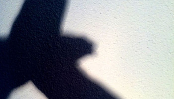512px-hand_shadow_bird