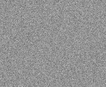 white-noise2
